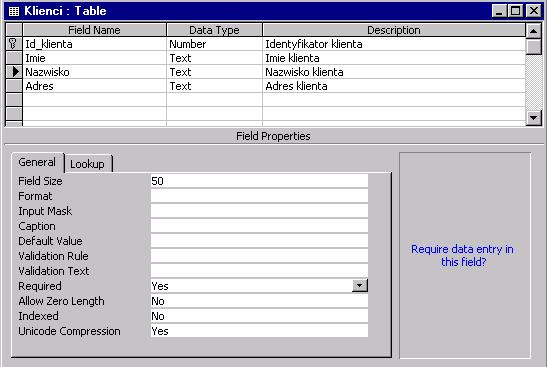 Program Ms Access